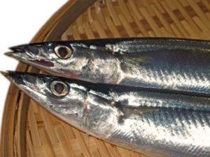青魚にも沢山含まれているオメガ3脂肪酸が凄く体にいいって評判